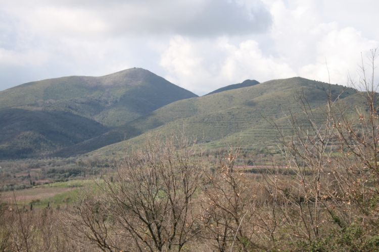 Monte Massico