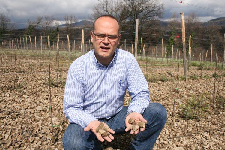 Nicola Trabucco, agronomo, enologo e produttore a Carinola (CE)