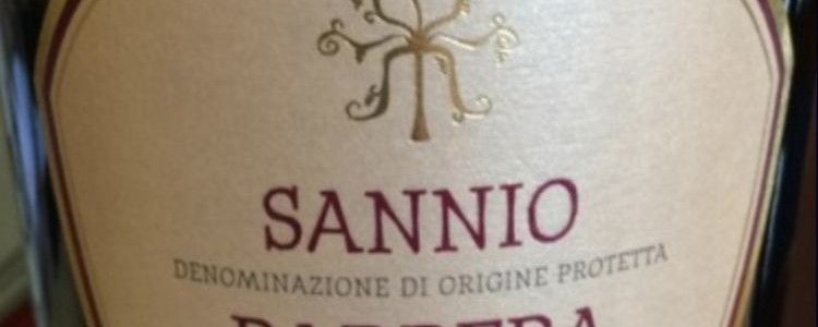 Vigne Sannite - Barbera '11