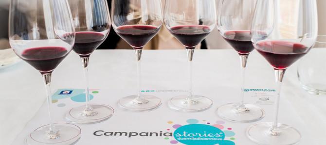 campania-stories-8