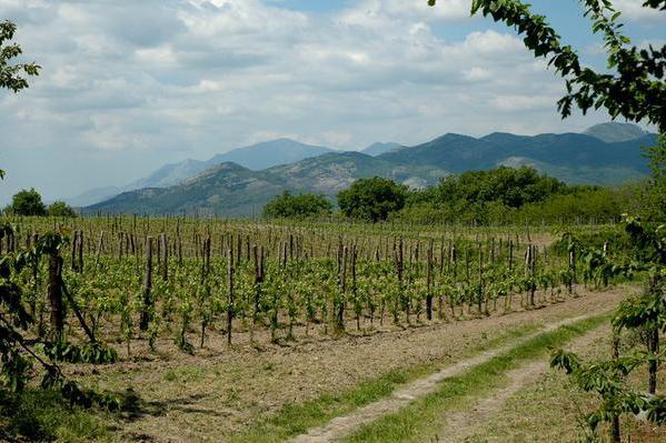 Masseria Starnali, Galluccio (CE) - Crediti foto: italia-agritur.it