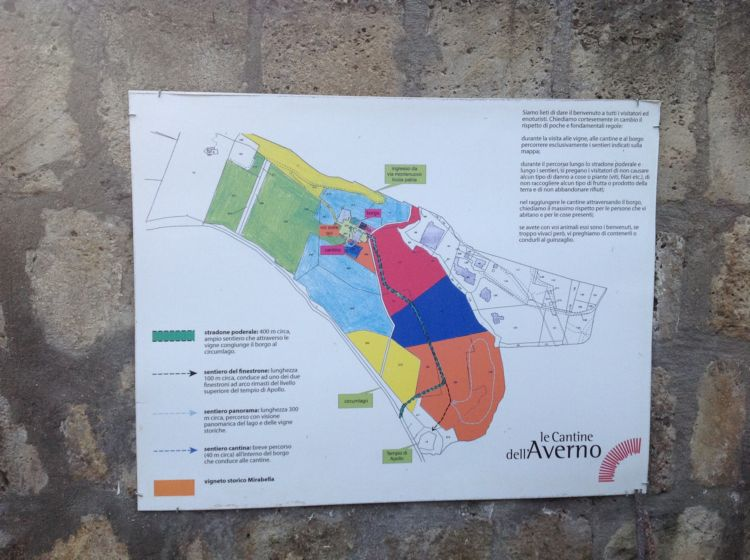parcelle cantine dell'averno
