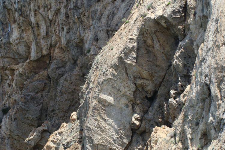Roccia dolomitico-calcarea della Costa d'Amalfi