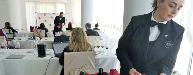 winemag_articolo_campania_stories_3